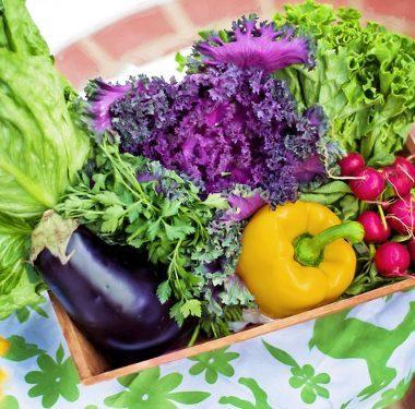 benefici-dieta-mediterranea-thumb
