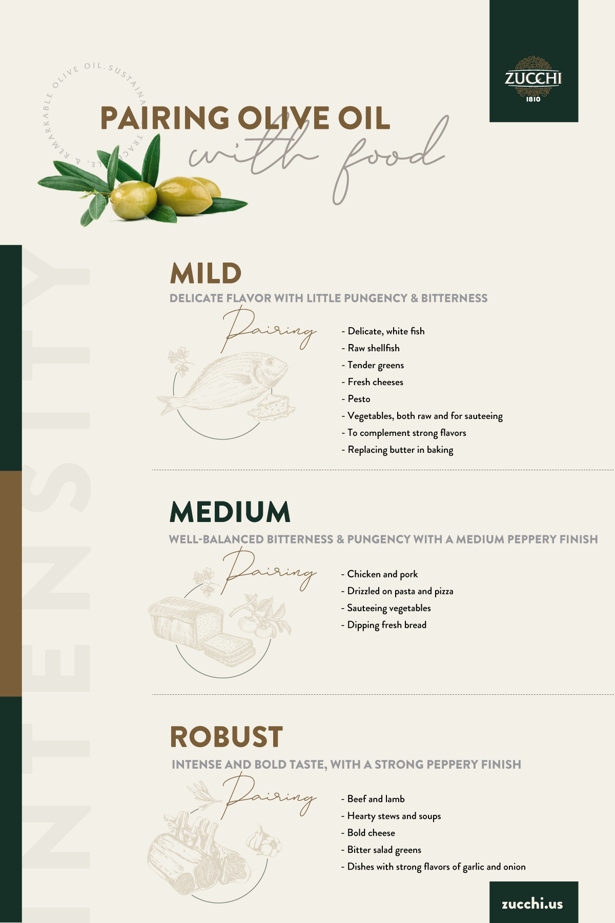 Olive Oil Pairing Chart - Zucchi 1810